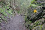 Le chemin est large et bien indiqué.