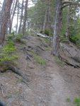 On continue notre progression en forêt