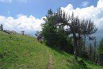 Pour y arriver, on descend par l'Aiguillon, d'abord par la crête