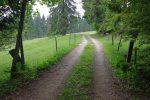 Après la route goudronnée, on bifurque à droite pour rejoindre la crête du Suchet