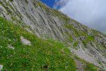 Sentier pierreux