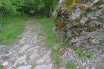 Joli passage