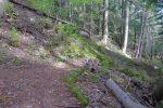 A gauche, hors photo le chemin qui descend depuis Jeur Brûlée. On part à droite, un chemin déjà emprunté