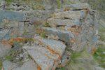 L'escalier de l'ancienne cabane, colonisé par la mousse