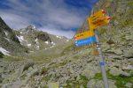 On rejoint le chemin depuis Champex-Lac, pour traverser ce plateau humide
