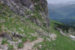 A partir d'ici le sentier devient plus corsée. La photo ne le restitue pas assez, mais le chemin est pentu ! On apprécie les bâtons.