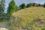 Je quitte le chemin, par lequel je reviendrais, pour la droite. Après ces quelques mètres, le chemin se perd, on ne le retrouve que plus haut.