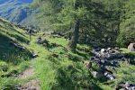 On longe la rivière Le Valsorey