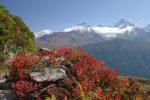Ah les belles couleurs d'automne, surtout avec une belle vue !