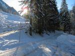 Départ depuis environ 1200m, juste avant Le Perruz pour cause de route bloquée par des travaux forestiers
