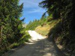 Pour le départ, nous empruntons la route forestière, pente douce