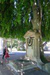 L'arbre prend sa place et pousse la pierre tombale