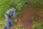 Vu le climat, les fourmies sont engourdies, on tente de les reveiller. Rien de tel qu'une experience scientifique !