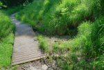 Ce pont enjambe un tout petit ruisseau qui me sera utile pour mes ablutions de fin de course.