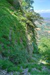 Un sentier part en devers sur la gauche (où je pars), un autre continue dans le bas du Dévaloir de la Mule.