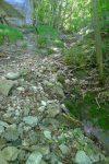 Une dernière montée raide pour rejoindre le rocher avec les inscriptions