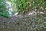 On quitte la Gorge de l'Evorse, par un chemin sur la gauche.
