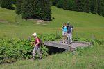 Nous passons ce pont (P1371), pour couper court dans le paturage