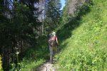 Un passage plutôt tranquille en forêt