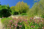 Le Jardin des Senteurs et du Toucher