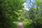 Le chemin est confortable, en forêt avec quelques trouées, tout en zig-zag et donc raide.