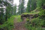Les ruines du Grenier d'Einzon, 1621m. C'est la fin des zig-zag et nous allons avoir un bon moment à flanc de coteau