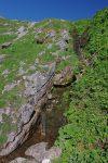 Ce ruisseau fut fort apprécié, ma réserve d'eau étant terminée