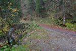 Départ depuis la route de Novel à La Planche, jusqu'au niveau de l'interdiction de circuler, que pour une fois j'ai respectée ! En scooter, en ce milieu, les nombreuses feuilles sur la route ralentir ma vitesse de croisière.