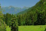 Sur notre gauche, belle vue sur la Dent de Jaman, Rochers de Naye, Col de Chaude et Pointe d'Aveneyre