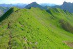 Nous allons descendre, un peu avant le Col de Bise, dans la sente vers les rhododendrons au centre droit de la photo