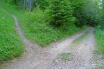 Si vous voulez le hors piste, à gauche toute pour La Char. Pas de panneau, mais c'est le sentier indiqué en rouge sur la carte