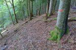 Encore une surprise, un ancien chemin et ses marques rouges