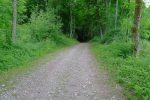 Chemin pour le camping