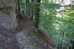Le chemin est une suite de petites montées et descentes, mais toujours à l'ombre