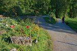 On emprunte la route avec un joli jardin