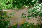 Le Boiron est un cours d'eau modeste