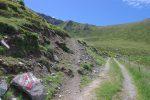 On quitte la route d'alpage, peu après la ferme, pour un chemin.