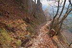 Le sentier est à flanc de coteau et on retrouve les feuilles mortes