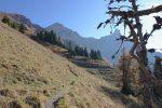 On sort de la forêt et la Dent de Morcles redevient visible (entre les branches)