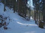 Vers 1200m, on quitte la route forestière pour le chemin d'été sur la gauche.