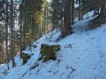 Le chemin est étroit mais la couche de neige est bonne.