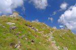 Le sommet du Mont de Grange, 2432m