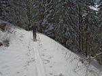 Le chemin forestier tout tranquille