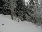 Vers 1750m, on laisse le chemin d'été, pentu et peu enneigé, pour continuer sur la route forestière sur la droite.