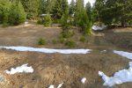 Forêt de Plapon, on tourne à gauche enfin sur les skis !