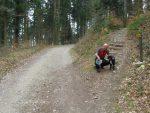 On emprunte une route forestière que l'on quitte vite pour ce chemin pédèstre.