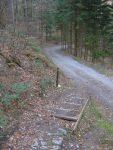 Et on retrouve les escaliers puis le chemin forestier