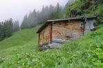L'abri de Sélaire à 1751m, on est sorti de la forêt depuis peu