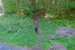 Départ depuis le bas de Pré d'Anselme