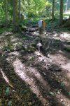 La montée dans le sous bois fut appréciée car la chaleur était bien présente en ce jour